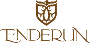 Enderun-Colleges-Logo-Normal